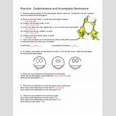 Codominance And Incomplete Dominance Practice  Name Date Practice Codominance And Incomplete