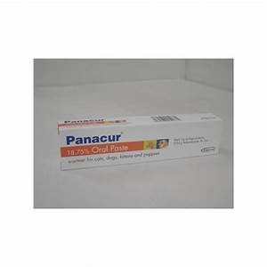 798 panacur paste for dogs cats 1 syringe of 5g