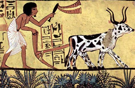 ag es de cuisine daily in ancient