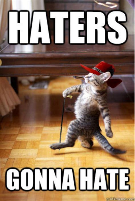 Hate Memes - image 250221 haters gonna hate know your meme
