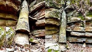 U00c1rboles De Piedra
