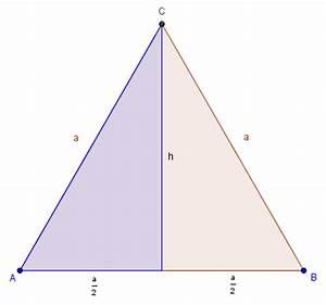 Dreieck Berechnen Rechtwinklig : die h he berechnen ~ Themetempest.com Abrechnung