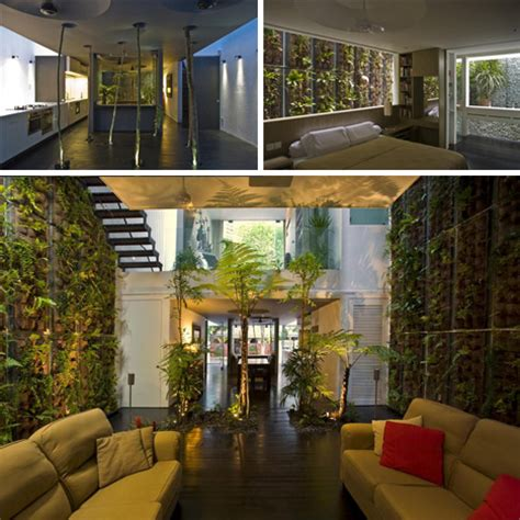 Green Home Design by Jungle Home Green Tree Filled Interior Moss Lined Walls