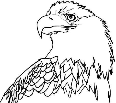 Coloring Eagle by Free Bald Eagle Coloring Pages Az Coloring Pages
