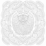 Tawny Owl Marotta Millie sketch template