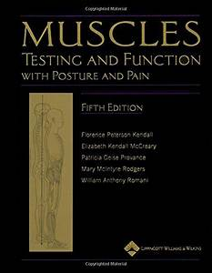 Muscles  Testing And Testing And Function  With Posture