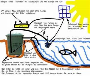 Solar Teichpumpe Mit Akku Und Filter : bauanleitung teich filter ~ Eleganceandgraceweddings.com Haus und Dekorationen