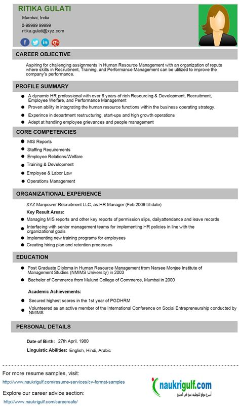 Pilot Resume Service by Write My Essays Today Pilot Resume Service