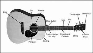 Guitar Diagram