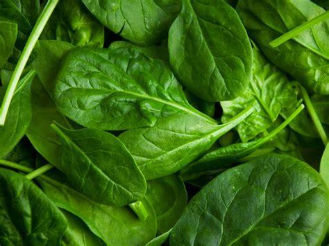 beetroot health benefits  nutritional information