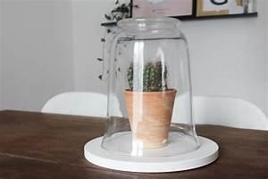 Cloche En Verre Ikea : tutoriel diy diy une cloche en verre pour ma d co ~ Dailycaller-alerts.com Idées de Décoration