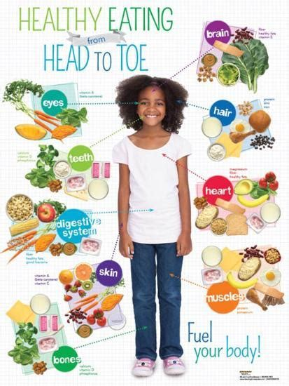 Healthy kids, healthy future encourages and supports child care and early education providers to make positive changes in their programs in order to you can create opportunities for learning about healthy food in many ways besides cooking and eating: 'Kid Healthy Eating Head to Toe Poster' Posters - | AllPosters.com
