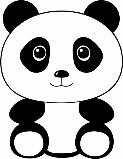 Panda Cartoon Animals Kid