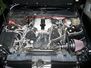 Laxboy1189 2003 Cadillac Cts Specs  Photos  Modification Info At Cardomain