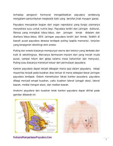 Anatomi Wanita Dewasa Mencegah Kanker Payudara