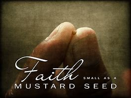 Image result for the mustard seed