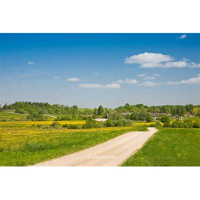 Winding Road near Kodijärv Tartu County Estonia Europe