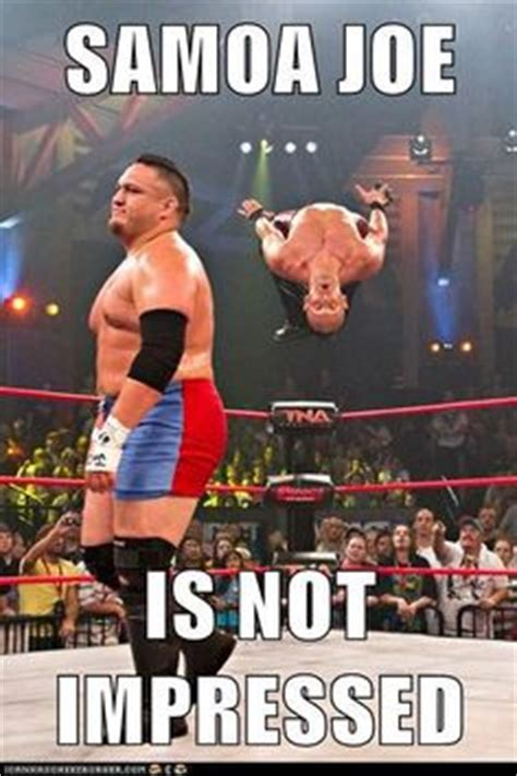 Funny Wrestling Memes - 1000 images about wrestling on pinterest cm punk sheamus and wwe