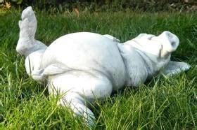 Js Gartendeko by Js Gartendeko Beton Figur Schwein Auf R 252 Cken Liegend L 32