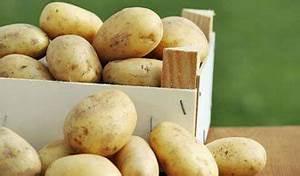 Kartoffeln Lagern Ohne Keller : kartoffeln pflanzen so wird es richtig gemacht ~ Frokenaadalensverden.com Haus und Dekorationen