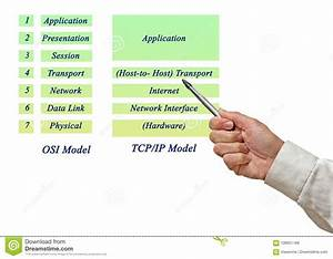 Osi Reference Model And Tcp  Ip Model Layers Stock Photo