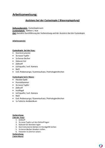 arbeitsanweisung assistenz bei der cystoskopie