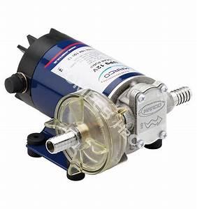 Pompe à Eau électrique : pompe electrique 12v gasoil ~ Medecine-chirurgie-esthetiques.com Avis de Voitures