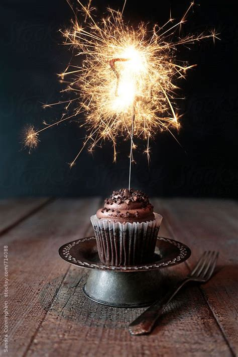 chocolate cupcake  lit sparkler  dark background