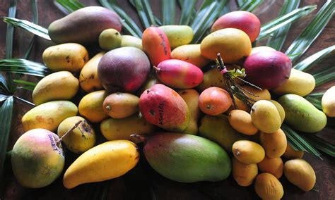 What's The Difference Between Mango Varieties?