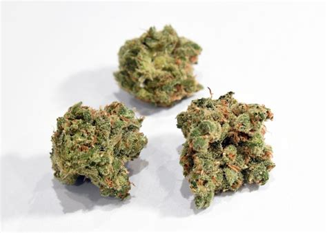 Researchers Map Marijuana Dna To Unlock