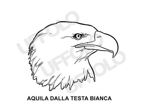 disegni da colorare uccelli disegni immagini da stare e colorare uccelli e
