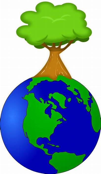Earth Clip Tree Environment Cartoon Terre French