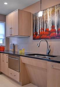 Universal Kitchen Designs With Ada Accessibility