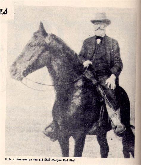 The Centaur By May Swenson Essay the centaur by may swenson essay bibliographysetup x fc2