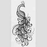 Colorful Peacock Tattoo Drawing | 1014 x 1950 jpeg 263kB