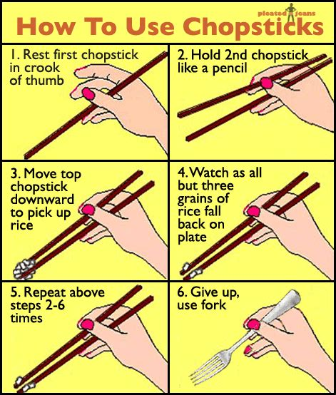 how to use chopsticks henley the great dane says quot boof quot how to use chopsticks