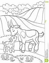 Goat Pagina Capra Coloring Leuke Weinig Geit Kleurende Kleur Coloritura Bambino Piccola Sveglia Niobrarachalk Colouring sketch template