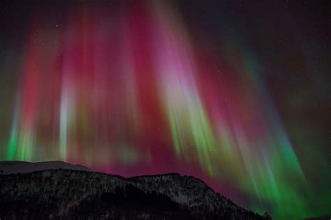 Northern Lights Animated Wallpaper - borealis wallpaper screensavers wallpapersafari