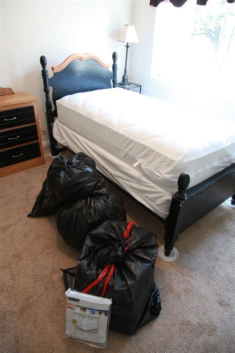 bed bug treatment how to eradicate bed bug front yard