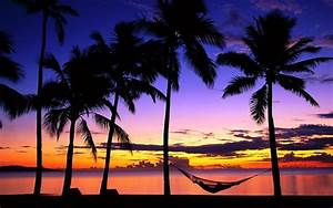 My paradise, nappin in my hammock on a tropical beach at ...