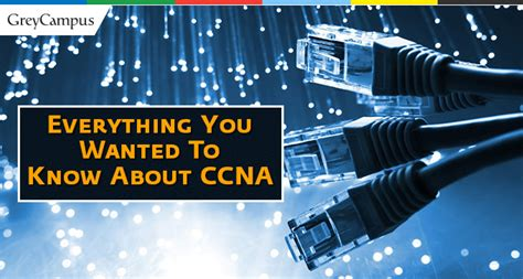 Everything You Wanted To Know About Ccna