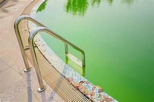 Poolwasser Ist Grün : poolwasser gr n optirelax blog ~ Watch28wear.com Haus und Dekorationen