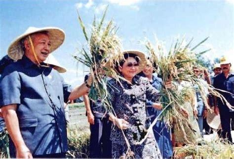 presiden soeharto  perhatian   petani