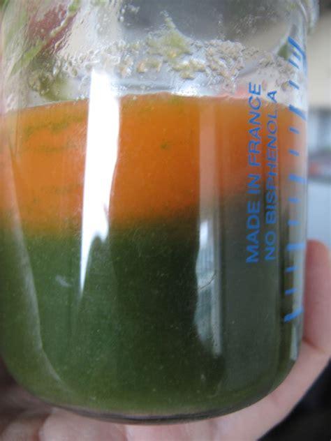 recette petit pot bebe 6 mois babycook pur 233 e carotte haricots verts 224 partir de 6 mois petitpotbebe mes recettes de petits pots