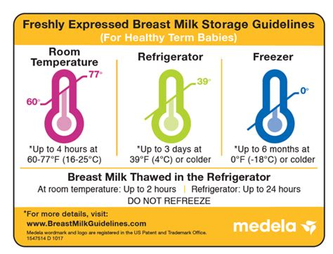 Medela Supports You With Breast Pumps, Breast