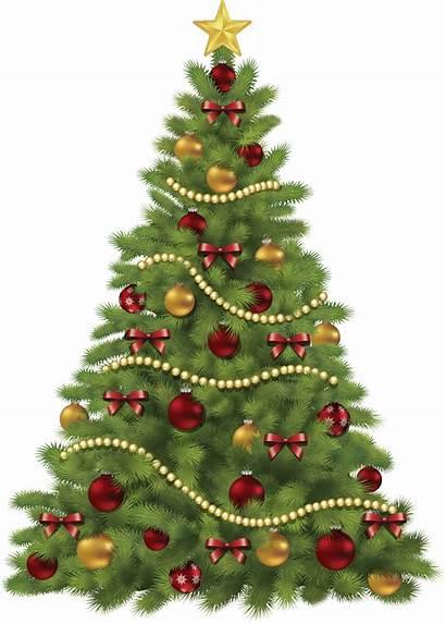 Tree Clipart Mas Transparent Merry Purepng Xmas