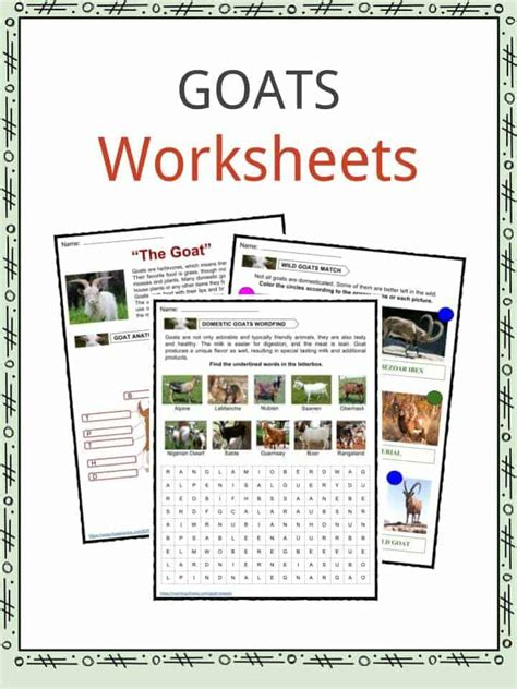 facts about goats for preschoolers goat worksheets kindergarten goat best free printable 138