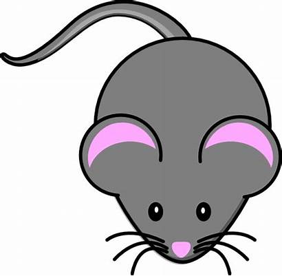 Mouse Clipart Quiet Gray Clip Clker Mice