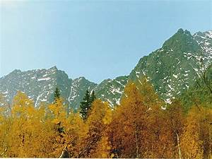 The gallery for --> Urals Mountain Range