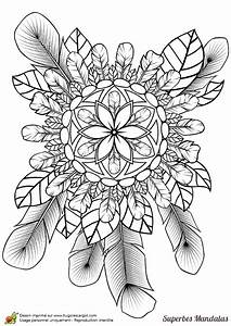 Dessin De Plume Facile : coloriages superbes mandalas nature et plumes coloriages coloriage coloriage janvier et ~ Melissatoandfro.com Idées de Décoration